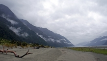 hollyford_536